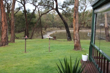 The bird feeders with resident Galahs