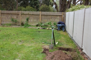 The Site for our Greenhouse
