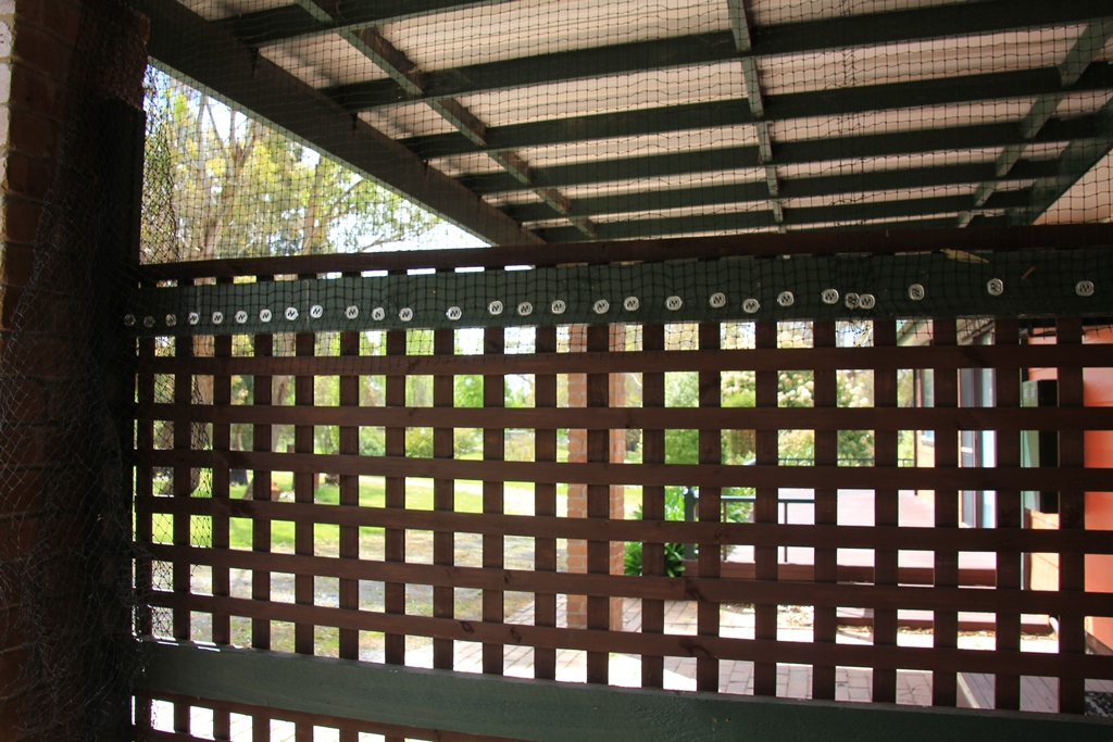Retained Lattice Fence