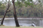 Rain on the dam