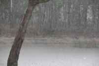 Raindrops 02