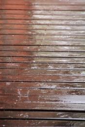 Raindrops 09