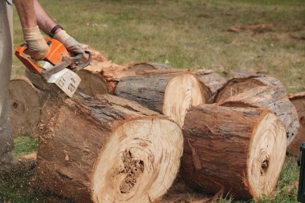 Logs 2