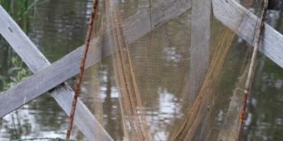 Yabbie Nets 2