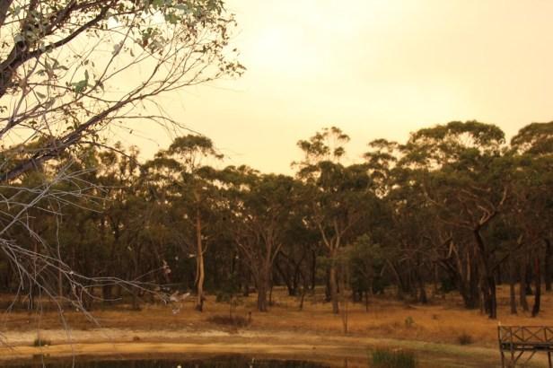 Landscape in Smoke Haze