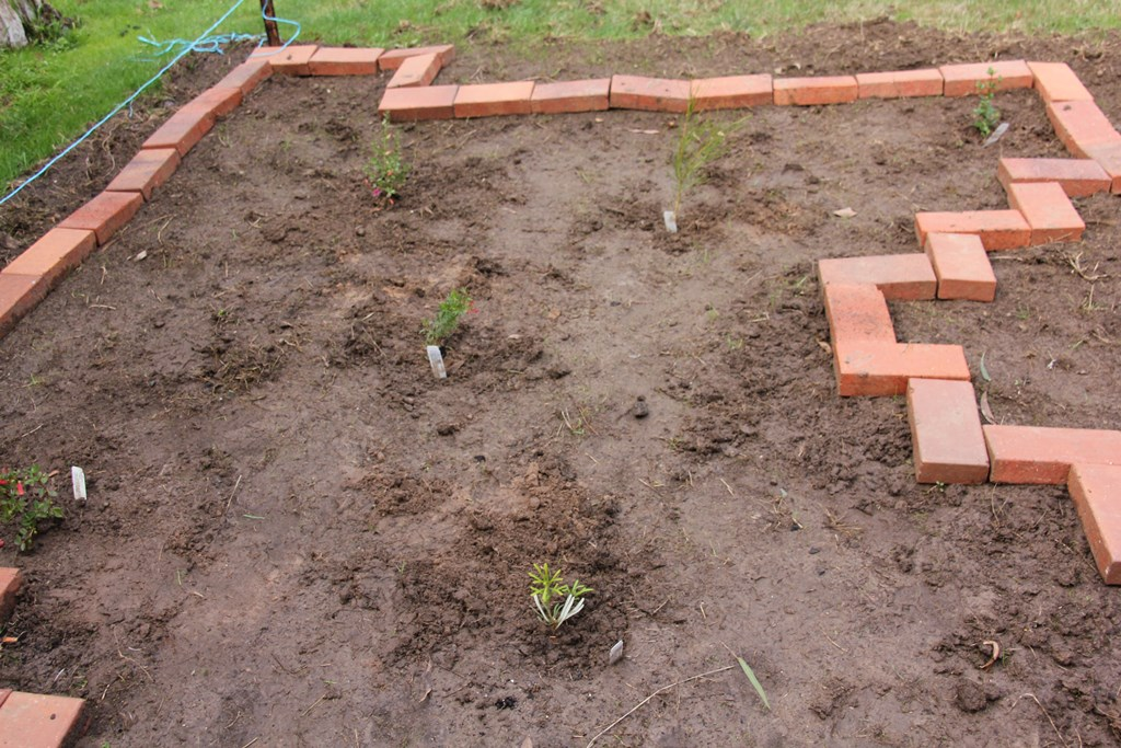 newly-planted-garden-bed