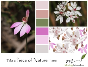 fabric-design-inspired-by-nature
